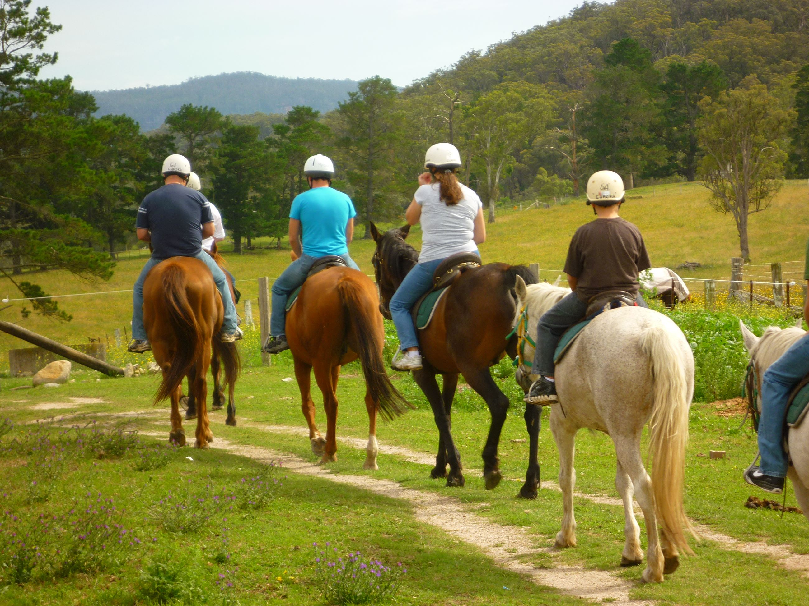 Horse-riding Group